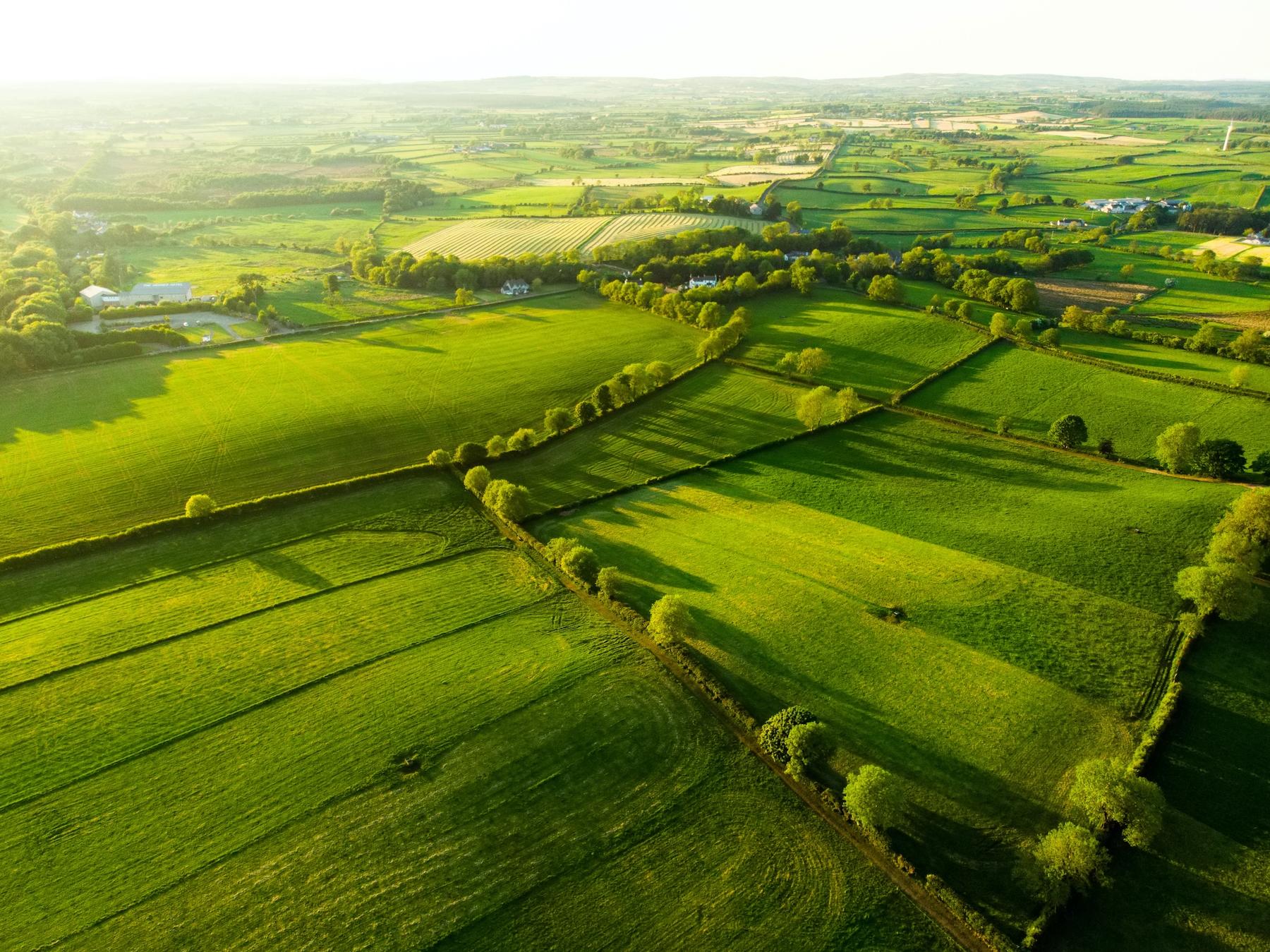 Ireland Green Landscape